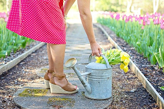 Image of lady bending to watering can in a garden of blooming flowers